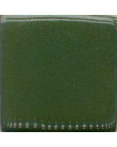 Cactus Green MBG004