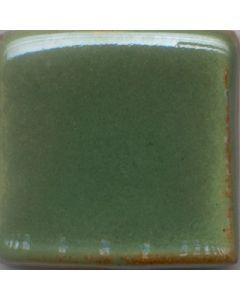 Green Shino MBG044