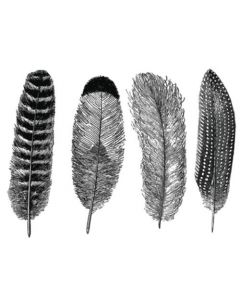 Large Feathers Decals