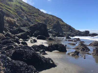 Why We Travel, Visiting San Francisco